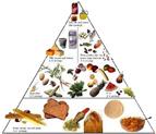 既可保健康又可减肥的健康饮食基本