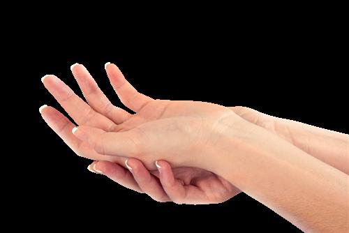 宇宙最捧的感官系统 – 手